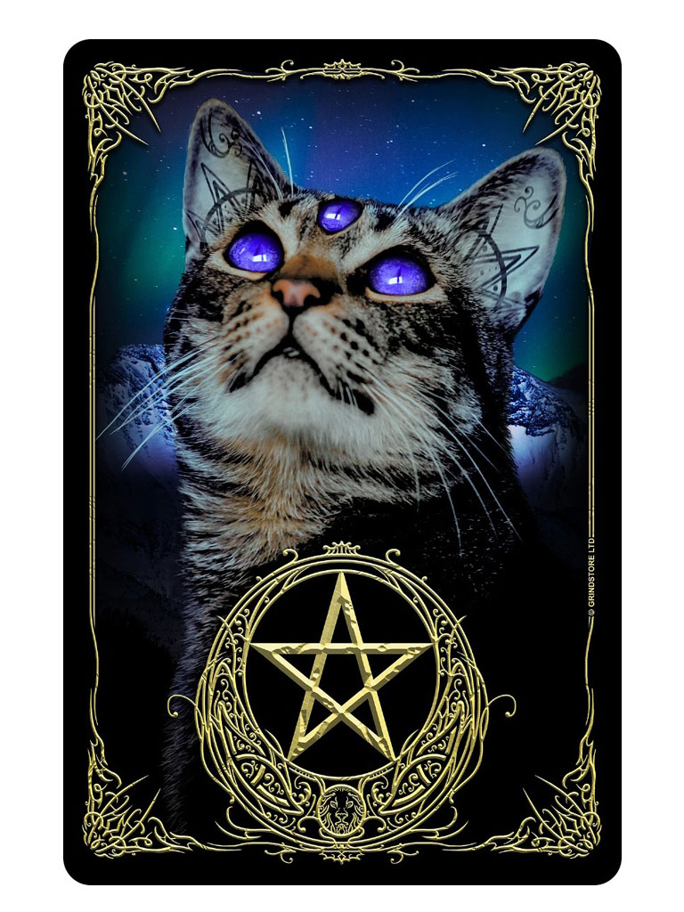 GRINDSTORE - Witchy Familiar Tin Sign