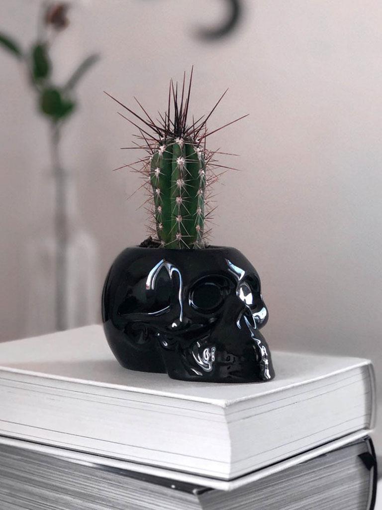 KILLSTAR - Skull Planter